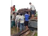 Bốc xếp hàng hóa tại Hà Nội giá rẻ uy tín